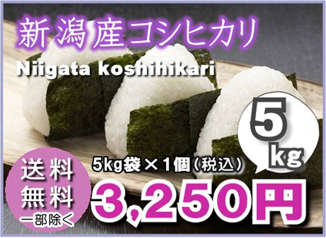 【送料無料】新潟産こしひかり5kg