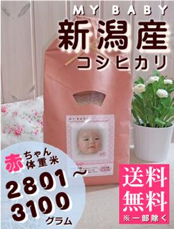 出産内祝い体重米 MY BABY新潟:2801~3100g