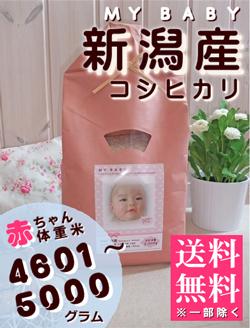 出産内祝い体重米 MY BABY新潟:4601~5000g