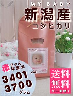 出産内祝い体重米 MY BABY新潟:3401~3700g