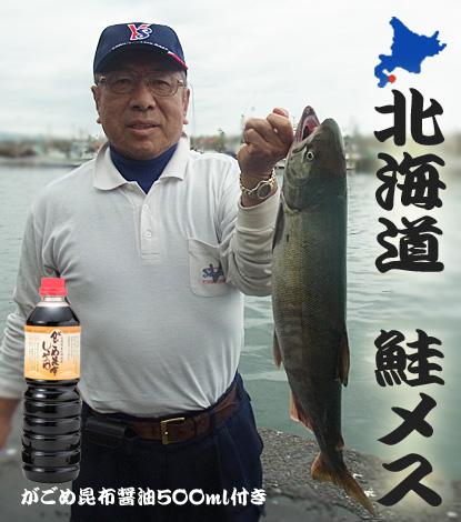 鮭 メス イクラ