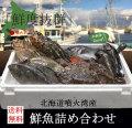 北海道噴火湾産 鮮魚 産地直送 朝獲れ