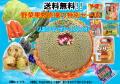 【クール便 送料無料!!】野菜果物売場の特別セール (人気のプリン・ゼリー・こんにゃく付)