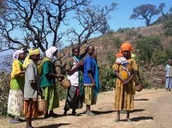 エチオピア  「ハラーナチュラル」 ハイロースト(200g)