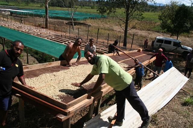 パプアニューギニア ガウリ ケニー農園 シティロースト(200g)