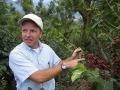 グァテマラ サンタカタリーナ農園ミディアムロースト(500g)[sc-5-5] 〔グァテマラ産オススメ自家焙煎コーヒー豆 10%OFF〕