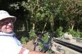 グァテマラ ラ・ホヤ農園 シティロースト(200g)