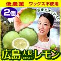 ※クール便出荷※広島レモン(2個セット) 皮まで食べられる農薬をほとんど使っていない れもん 広島県 国産【代引き不可】