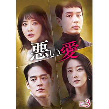 悪い愛 DVD-BOX3