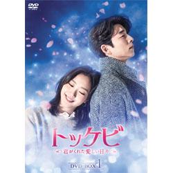 トッケビ~君がくれた愛しい日々~ DVD-BOX1  125分