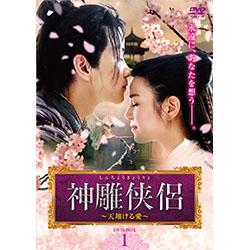 神雕侠侶<しんちょうきょうりょ>~天翔ける愛~ DVD-BOX1