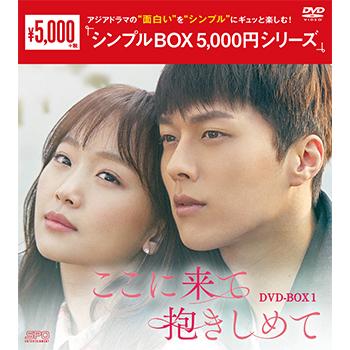 ここに来て抱きしめてDVD-BOX1 (5枚組)<シンプルBOX 5,000円シリーズ>