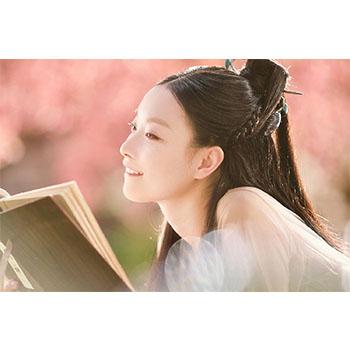 運命の桃花~宸汐縁~ DVD-BOX
