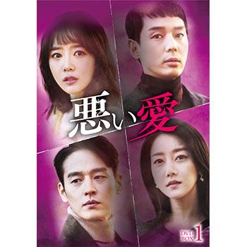 悪い愛 DVD-BOX1