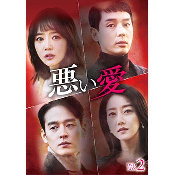 悪い愛 DVD-BOX2
