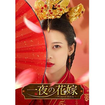 一夜の花嫁~Pirates of Destiny~ DVD-BOX1