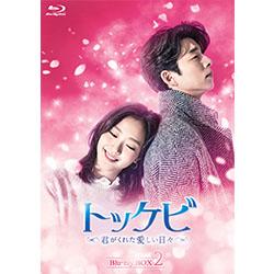 トッケビ~君がくれた愛しい日々~ Blu-ray BOX2  261分 特典映像DVDディスク2枚付き