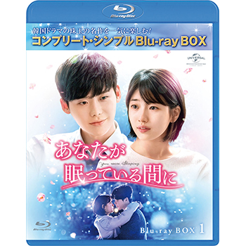 あなたが眠っている間に BD-BOX1 <コンプリート・シンプルBD‐BOX6,000円シリーズ>【期間限定生産】