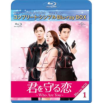 君を守る恋-Who Are You- BD-BOX1 <コンプリート・シンプルBD‐BOX6,000円シリーズ>【期間限定生産】