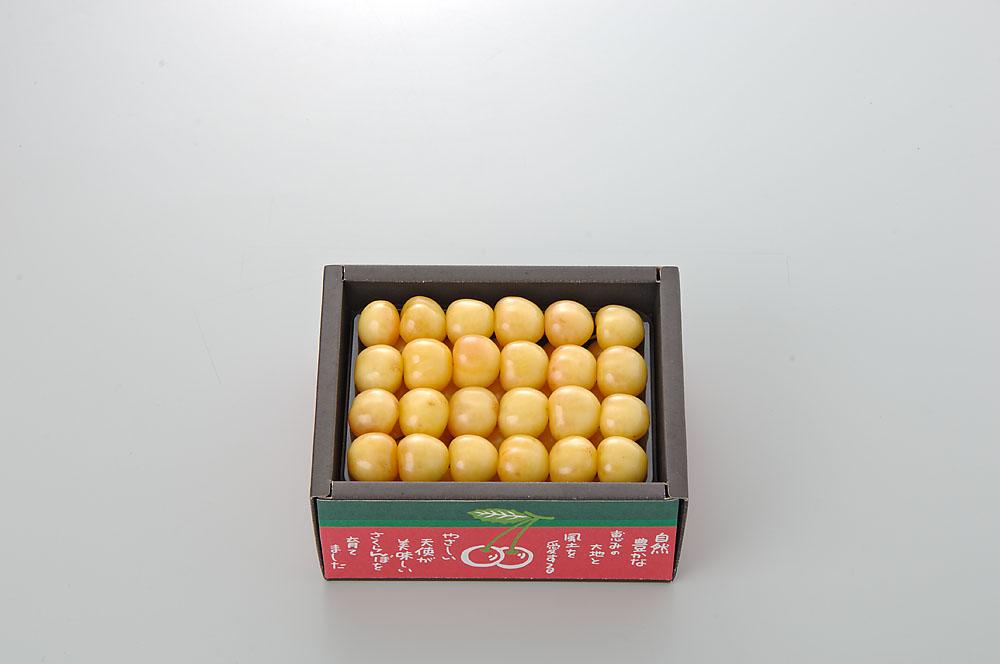 【さくらんぼ】 月山錦 500g 2L玉以上 Yes Clean!(北海道クリーン農作物) 認定栽培