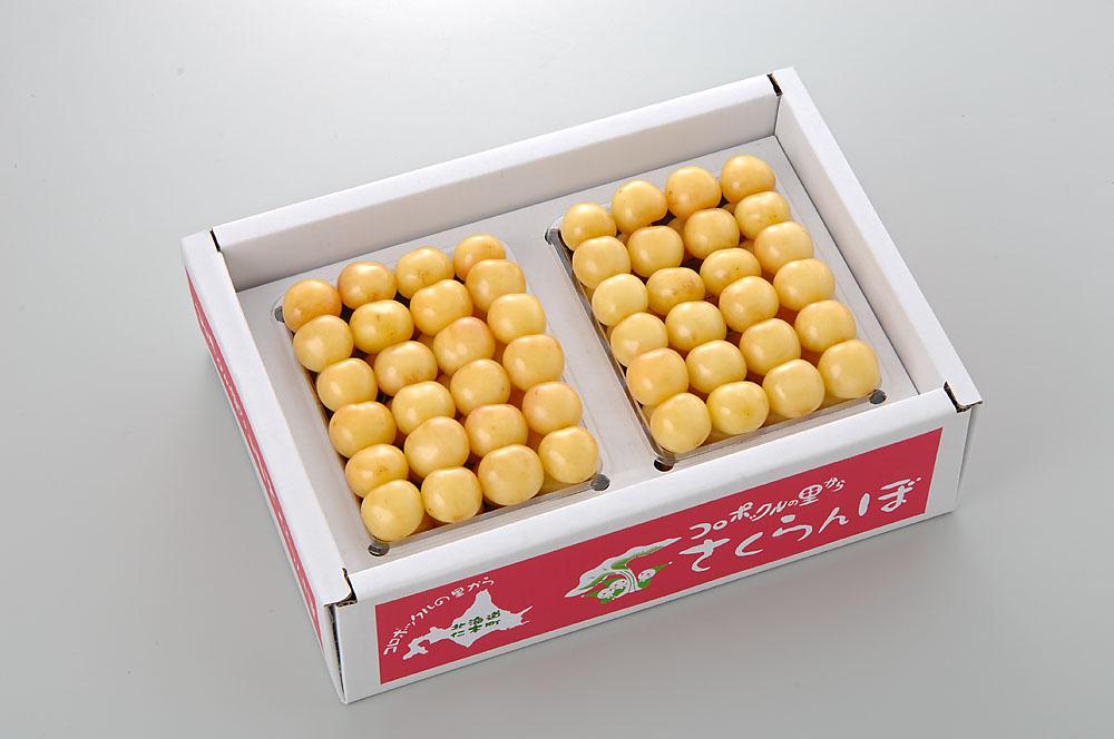 【さくらんぼ】 月山錦 1kg (500g×2) 2L玉以上 Yes Clean!(北海道クリーン農作物) 認定栽培