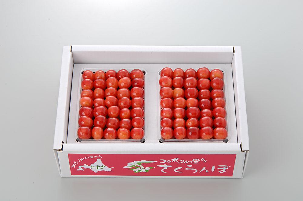 【さくらんぼ】 佐藤錦 1kg L玉以上 Yes Clean!(北海道クリーン農作物) 認定栽培