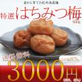 送料無料 はちみつ梅 650g 3000円
