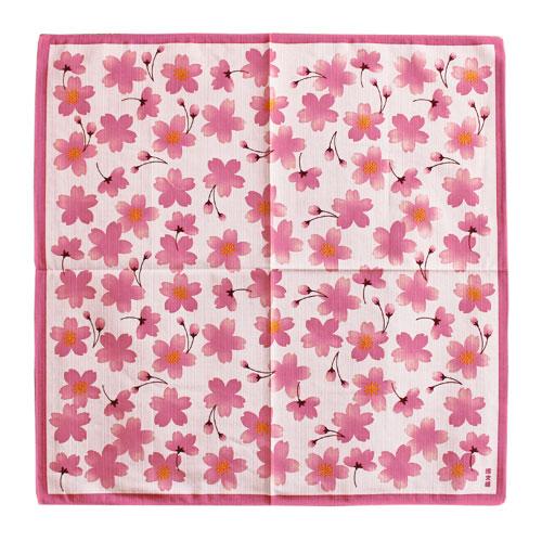 小布「ほのぼの桜」