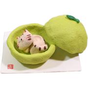 果物猫アロマ かぼす