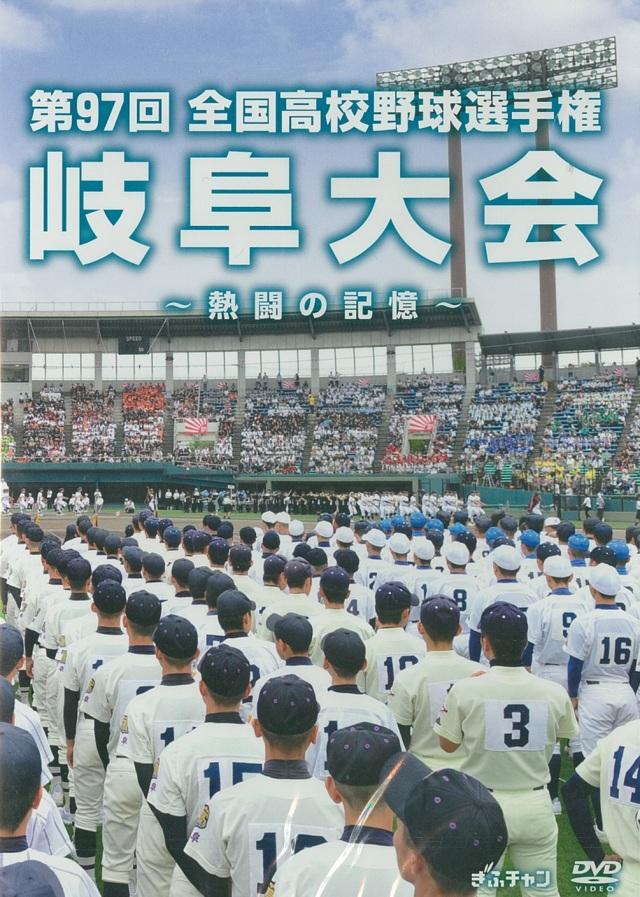 第97回全国高校野球選手権岐阜大会~熱闘の記憶~