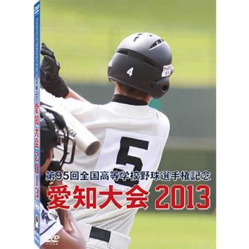第95回全国高等学校野球選手権記念 愛知大会2013