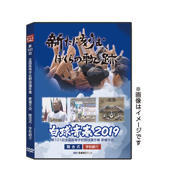 愛媛2019ジャケット