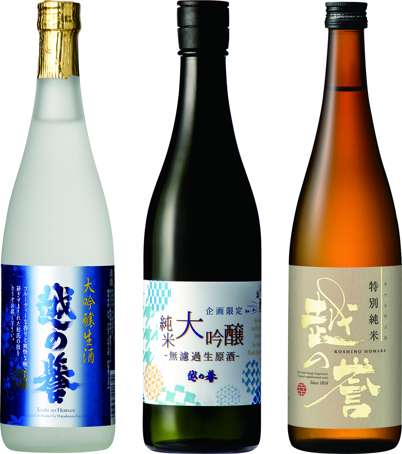 越の誉おうちde酒の陣限定セットA-5