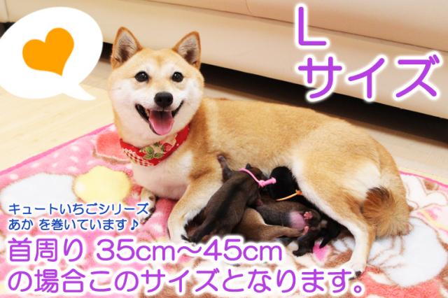 【メール便可】 ダニやノミを防ぐ有機JAS認定天然ハーブ100%配合 ハーブのくびわ『L』サイズ 首周りが35~45cmサイズの愛犬ちゃんにピッタリです。