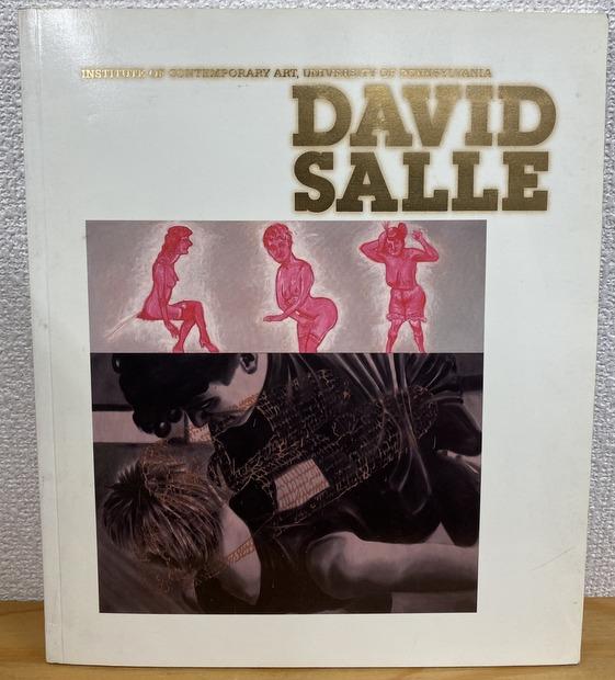 David Salle by Janet Kardon