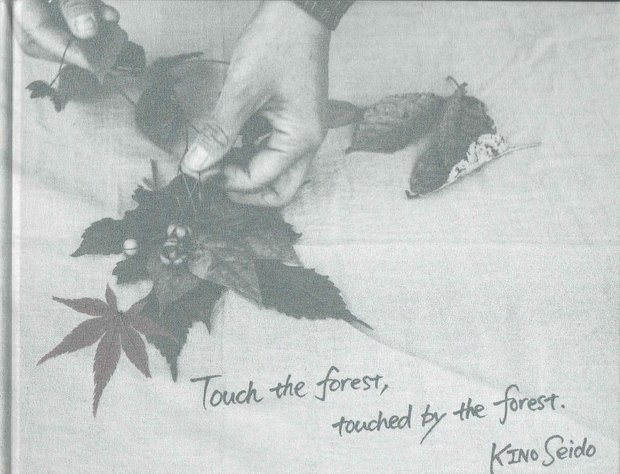 Touch the forest,touched by the forest. 紀成道写真集
