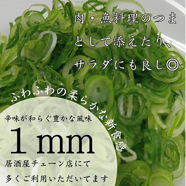 採りたて京都九条ねぎカットねぎ【お徳用1kg】【クール便】きざみねぎ1mm