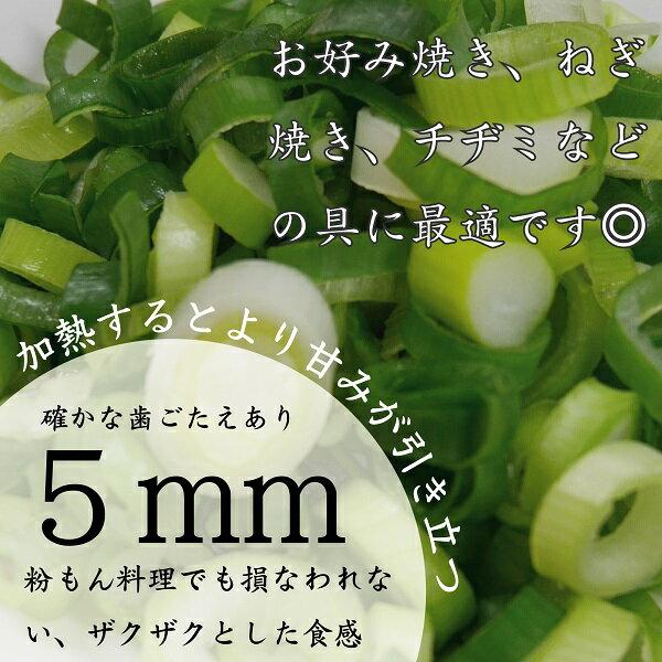 採りたて京都九条ねぎカットねぎ【お徳用1kg】【クール便】きざみねぎ5mm