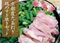 京都産九条ねぎ 鶏のすき焼きセット(2人前)