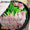 塩だしで味わいを愉しむ 京都産九条ねぎ 鶏の葱鍋セット(4人前)