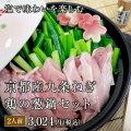 塩だしで味わいを愉しむ 京都産九条ねぎ 鶏の葱鍋セット(2人前)