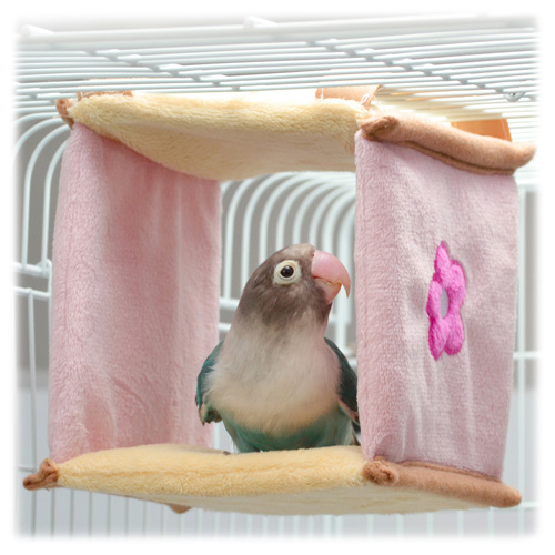 小鳥の四角ベッド