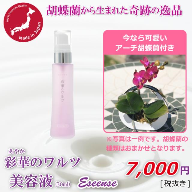 美容液+アーチ胡蝶蘭