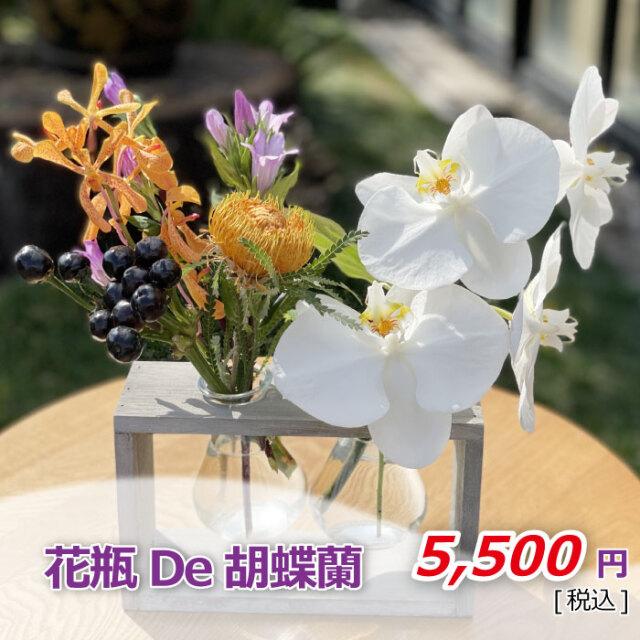 胡蝶蘭アレンジ 花瓶De胡蝶蘭 価格