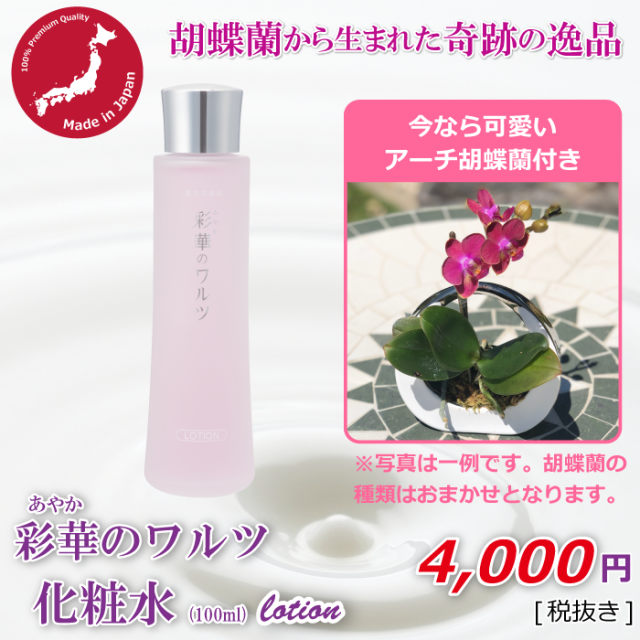 化粧水+アーチ胡蝶蘭