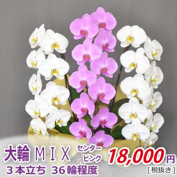 <価格改定>MIX3F36