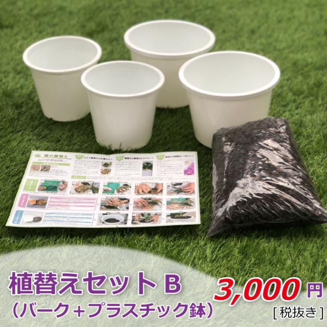 植替えセットB バーク+プラスチック鉢