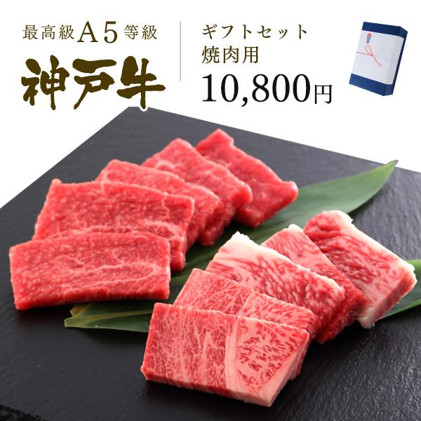 神戸牛ギフトセット 1万円 焼肉コース(肩ロース250g・プレミアムもも250g)500g
