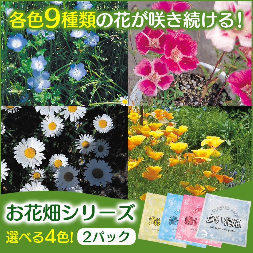 お花畑シリーズ【2パック組】