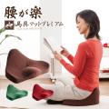 《完売》馬具マット プレミアム【送料無料】